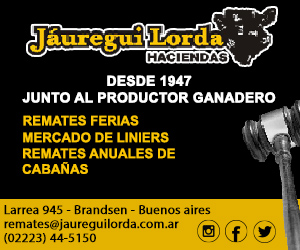 Jauregui Lorda - 300x250