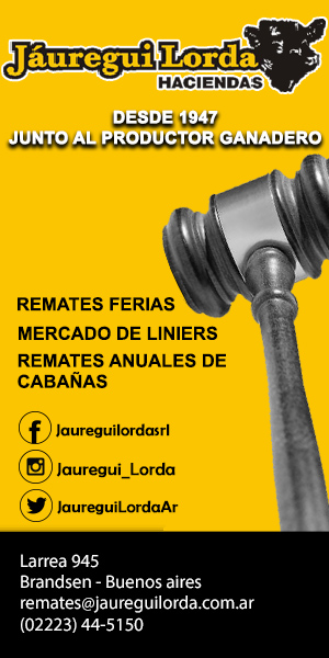 Jauregui Lorda - 300x600