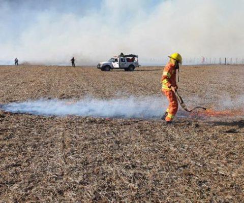 La Ley de Manejo del Fuego, nuevo frente de conflicto con el agro