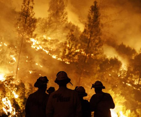 Incendios, una problemática recurrente y global