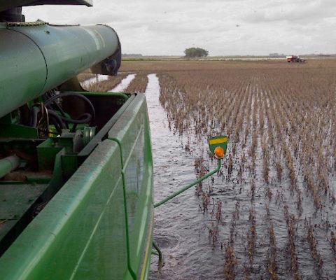 ¿Qué tiene de especial la impronta ambiental de la agricultura argentina?