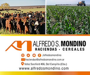 300x250_Alfredo_mondino