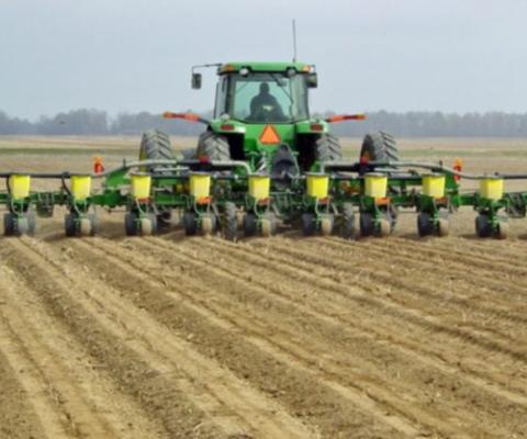 Alarma por la necesidad de una lluvia: la falta de agua impacta en el trigo y frena la siembra de maíz