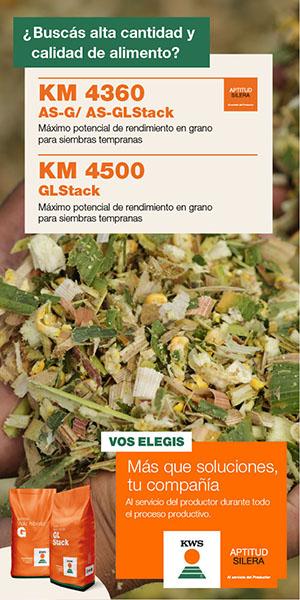 KWS - 300x600 Calidad y Cantidad