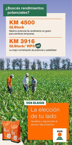 KWS - 300x600